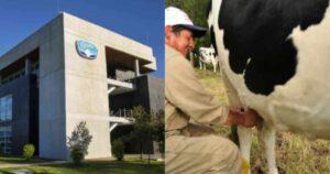 Por supuesta importación de leche, colombianos quieren castigar a Alpina 1