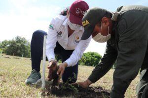5300 árboles serán sembrados en el CENOP - 7