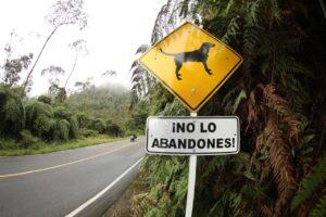 Cundinamarca cierra filas en torno a la protección y cuidado de los animales de compañía - 1
