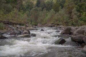 Administración Municipal celebrará el Día del río Combeima - 1