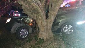 Un microsueño le habría costado la vida tras chocar contra un árbol en la vía a Alvarado 1