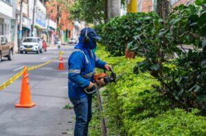 Más de 700 parques y zonas verdes de Ibagué se han intervenido - 1