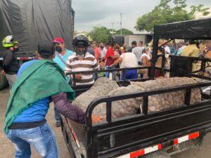 Exitosa venta de los papicultores de Murillo - 1