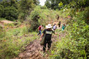 Declaran alerta amarilla en Tolima por lluvias 1