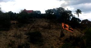 Ecocidio en la Coqueta, zona rural de Ibagué 1