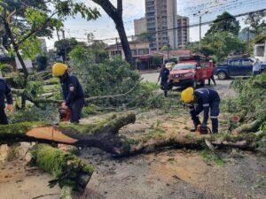 Organismos de socorro de Ibagué están en alerta por recrudecimiento de lluvias 1