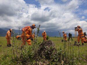 Alcaldía y Celsia sembrarán 2.200 árboles para recuperar fuentes hídricas de Ibagué 1