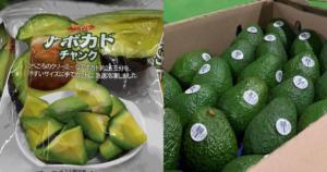 El Aguacate Hass ya se vende congelado en Japón 1