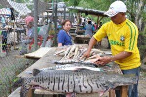 Producción de pescado crece hasta un 18 % en Semana Santa 1