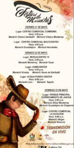 Disfrute del primer Festival de Mariachis del Tolima 1