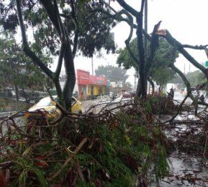 Lluvias provocaron emergencias en barrios de Ibagué 1
