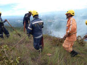 Más de 250 hectáreas de vegetación consumidas por incendios en Tolima 1