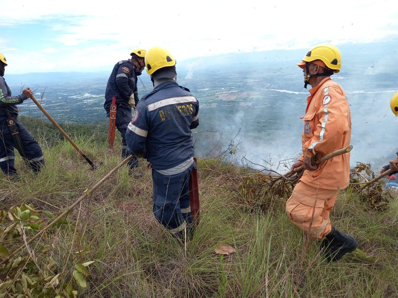 Más de 250 hectáreas de vegetación consumidas por incendios en Tolima 2